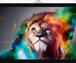 lion and color image
