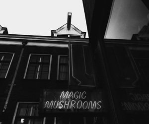 amsterdam, awesome, and magic image