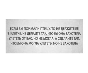 Image by Нармишка Алиева