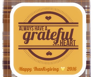 2016, grateful, and happy thanksgiving image