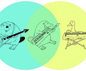 Platypus, duck, and beaver image