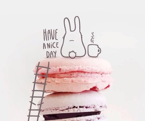 wallpaper, sweet, and ‎macarons image