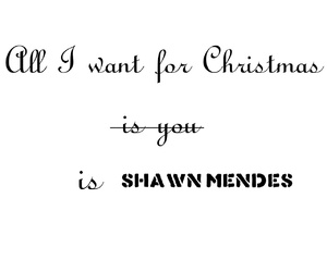 christmas and shawn mendes image