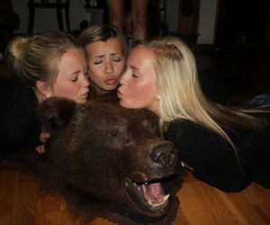 kiss, friends, and bear image