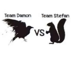 tvd, team damon, and team stefan image