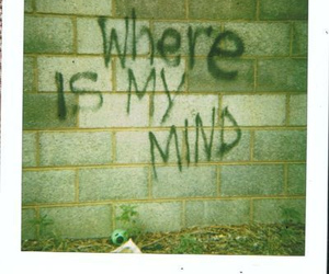 pixies and where is my mind image