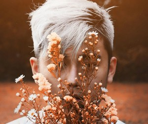 autumn, flowers, and hair image