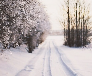 landscape, snow, and winter image