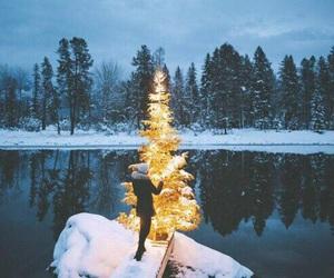 snow, christmas, and photography image