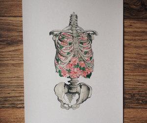 bones, doctor, and anatomy art image