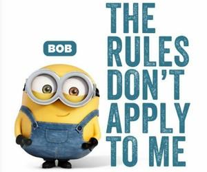 bob, rules, and minion image