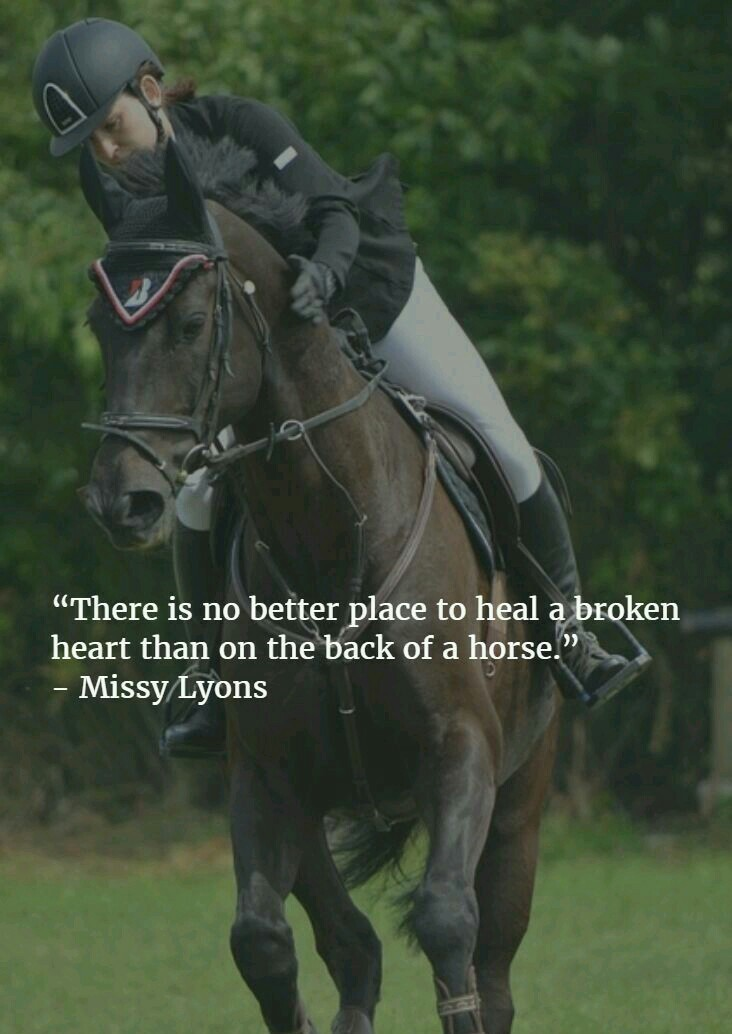 Equestrian Quote Shared By 𝙾𝚛𝚜𝚊𝙼 On We Heart It