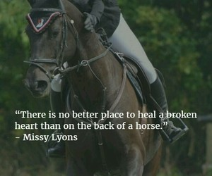 horse, quote, and equestrian image
