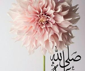عربي and اسﻻميات image