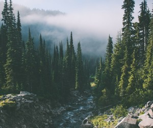 nature, mountains, and paradise image