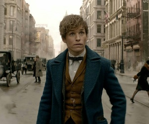 fantastic beasts and eddie redmayne image
