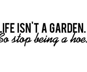 black and white, funny, and garden image