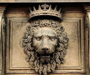 lion and crown image