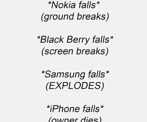 apple, black berry, and funny image