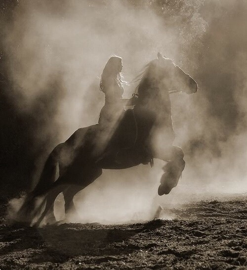 horse, animal, and woman image