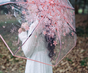 girl, pastel, and umbrella image