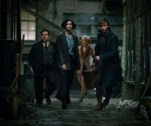 squad, fantastic beasts, and newt scamander image