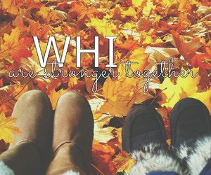 2016, we heart it, and autumn image