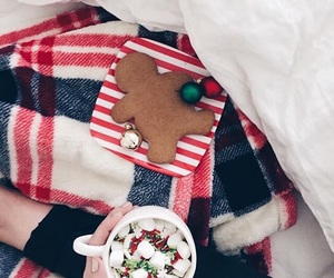 christmas, cocoa, and Cookies image