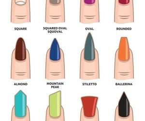 nails and shape image