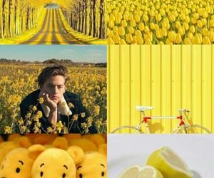 heart, winniepooh, and yellow image