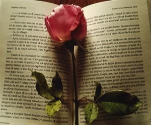 books, infinite, and introvert image