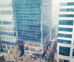 korea, snow, and winter image