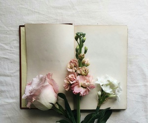 flowers, indie, and book image