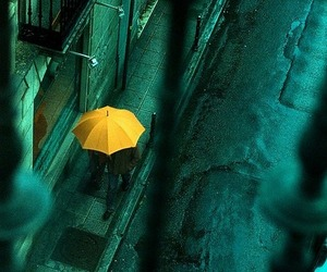 umbrella, rain, and yellow image