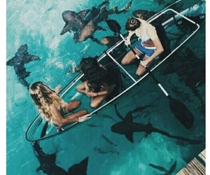 alternative, best friends, and sharks image