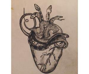 drawing, heart, and animals image