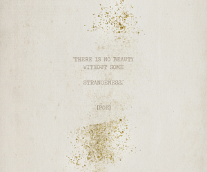 quotes, beauty, and strangeness image