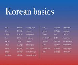basics, english, and korean image