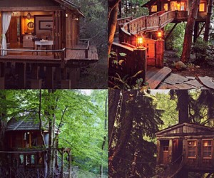 home, nature, and wood image