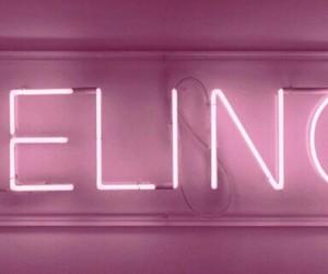pink, light, and header image