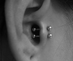 piercing, ear, and tragus image