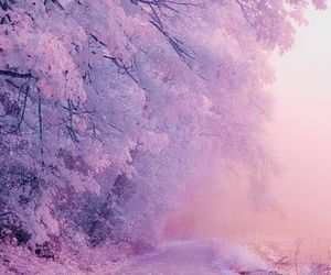 nature, tree, and pink image