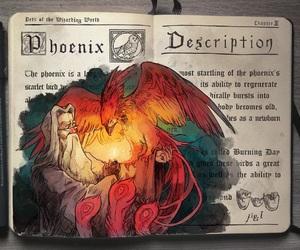 dumbledore, harry potter, and fenix image