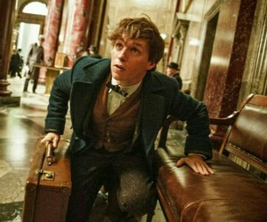 eddie redmayne, fantastic beasts, and harry potter image