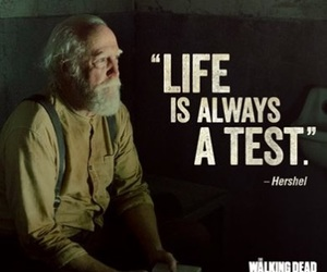 the walking dead, quote, and hershel image