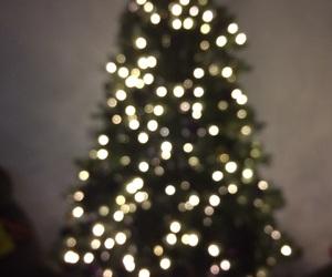 christmas, lights, and christmas trees image