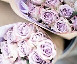 lilac, flowers, and purple image