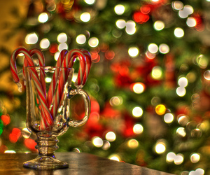 365 Project, bokeh, and candy cane image
