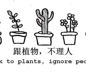 plants, quote, and cactus image