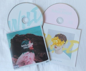 wild, halsey, and badlands image